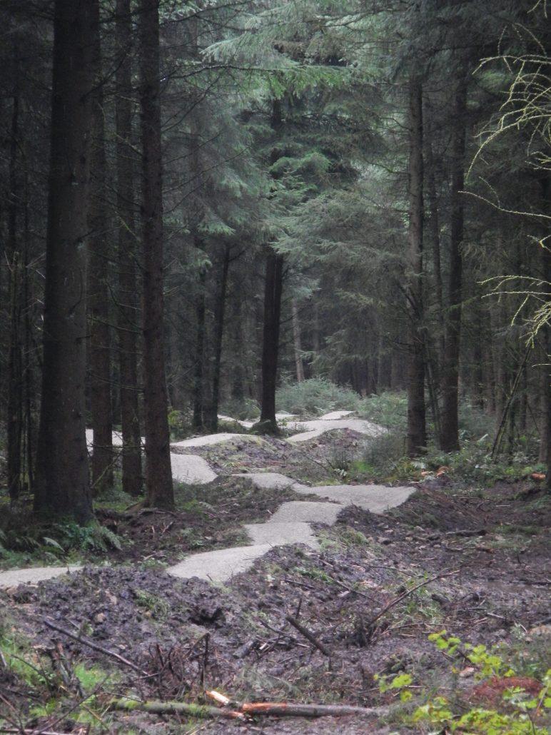 mountain bike trail maintenance