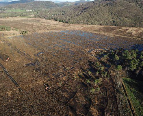 Peat bog restoration