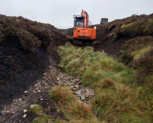 Peat Restoration