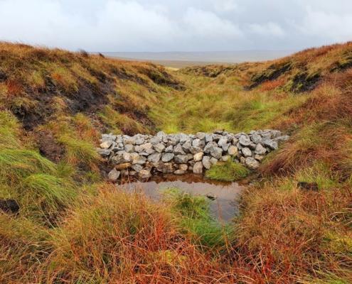 Moorland Restoration